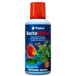 TROPICAL BACTO-ACTIVE 250ml